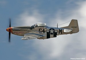 Wes Stowers_P-51 Ain't Misbehaing_David F Brown